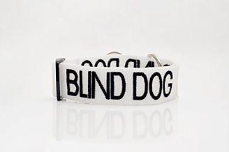 collar-perro-ciego