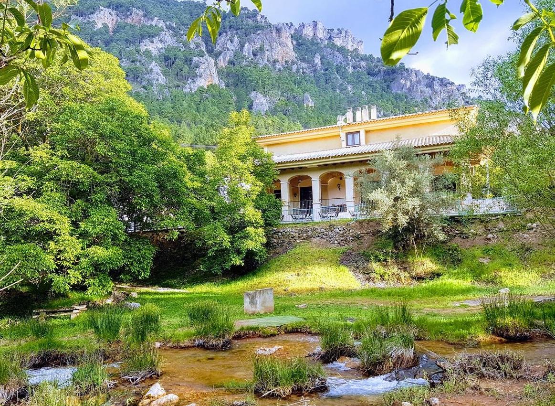 Los mejores hoteles con las valoraciones más altas que aceptan perros en la provincia de Albacete