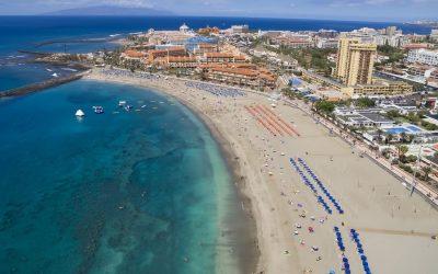 Hoteles que admiten mascotas en Playa de las Américas