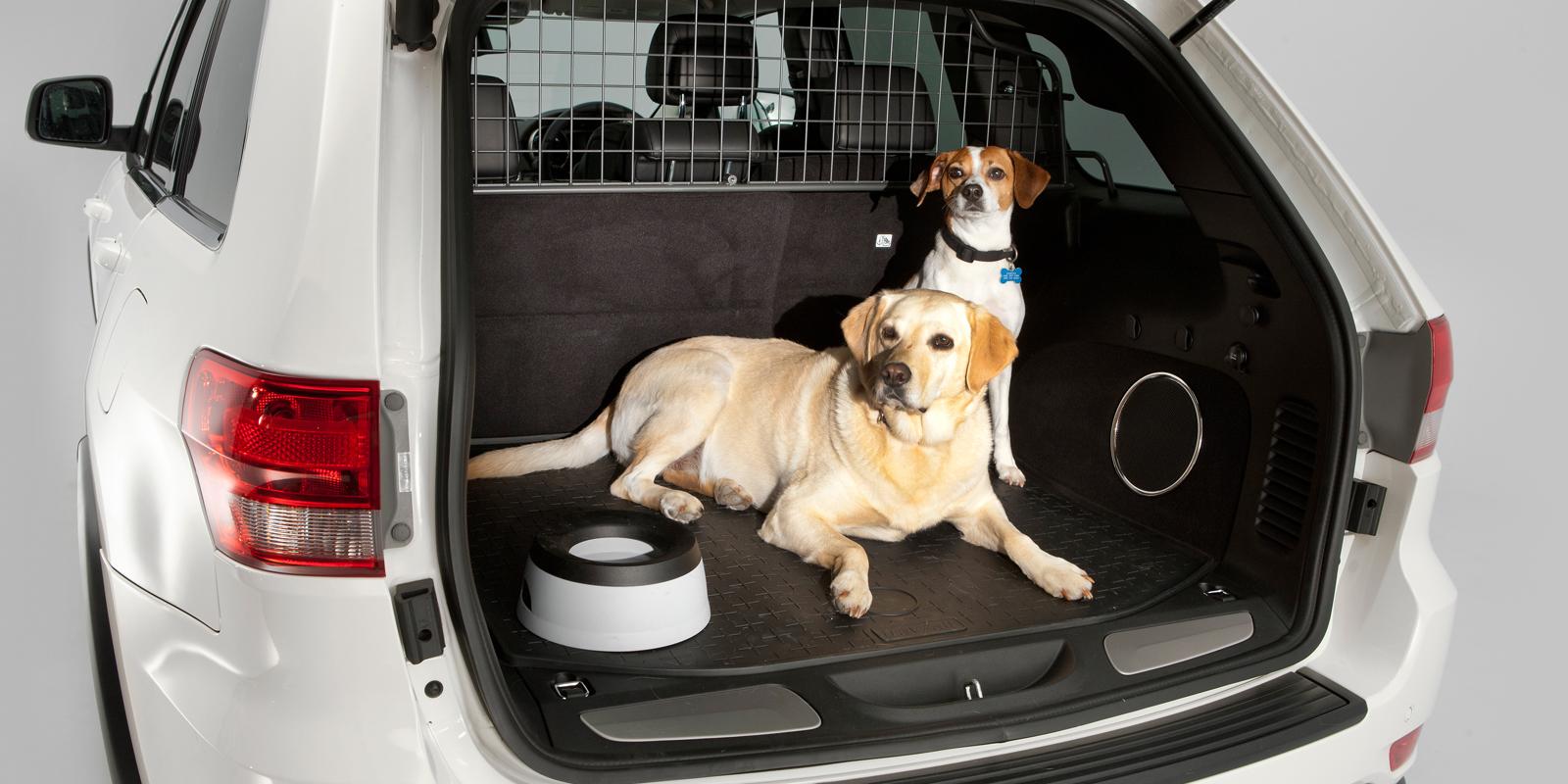 Las Mejores Fundas De Maletero De Coche Para Perros