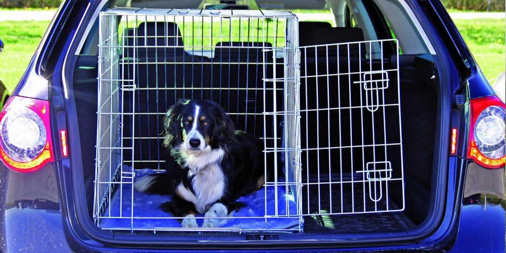 Las Mejores Jaulas Para Maletero De Coche Para Perros Grandes