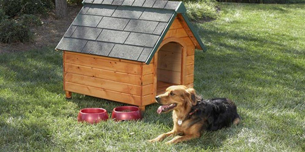 Top 10 Casas De Perros Baratas Y Con Buena Calidad