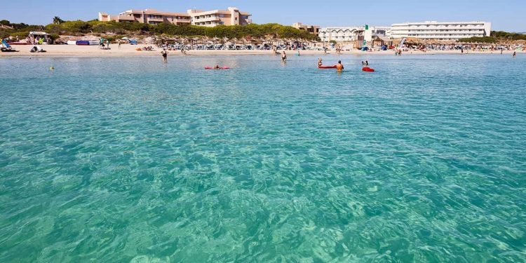 Hoteles que admiten mascotas en Can Picafort en Mallorca