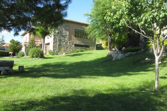 Casas rurales que admiten mascotas en casas rurales de la Sierra de Gredos perfectas para disfrutar de la naturaleza con tu perro
