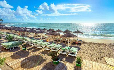 Hoteles que admiten mascotas en Benalmádena en la Costas del Sol