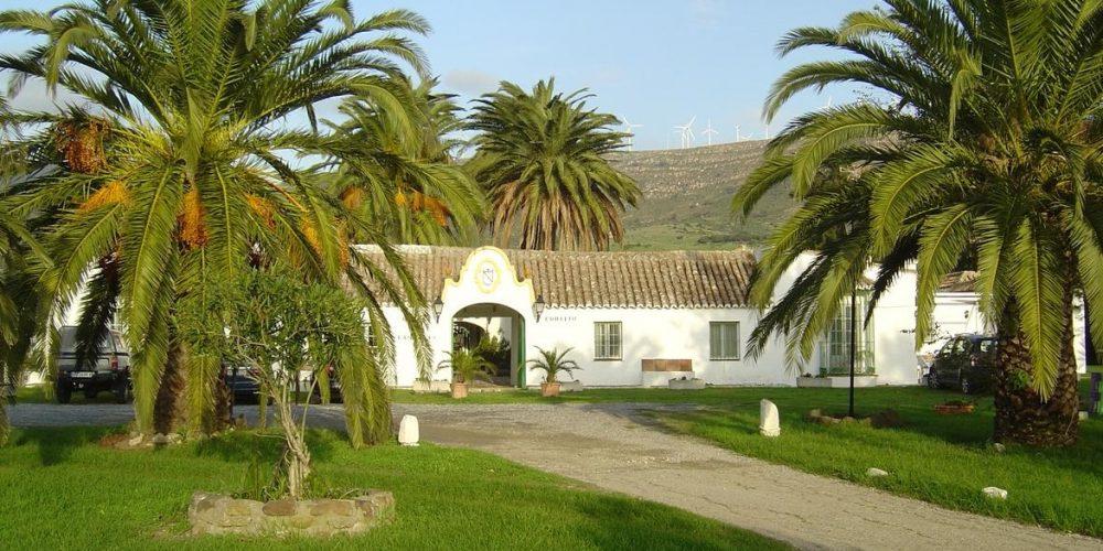 Villas y chalets que admiten mascotas en Tarifa
