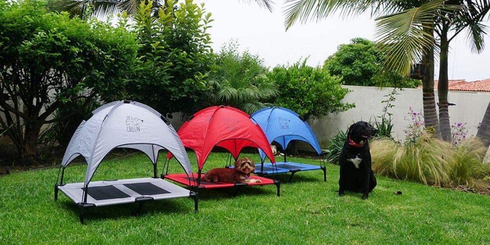 Mejores toldos para perros para proteger a tu mascota del sol
