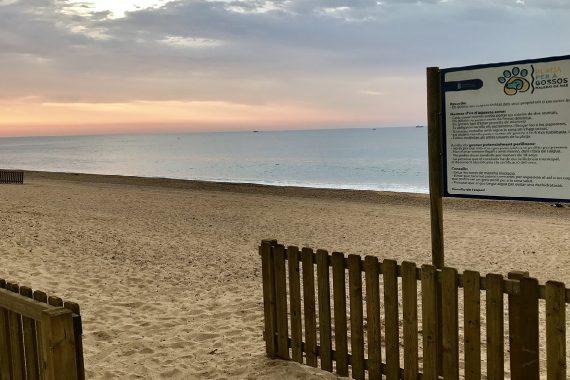 Playa para perros de La Conca en Malgrat de Mar