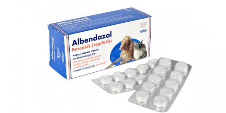 Albendazol para perros. Para qué sirve y qué daños y toxicidad tiene