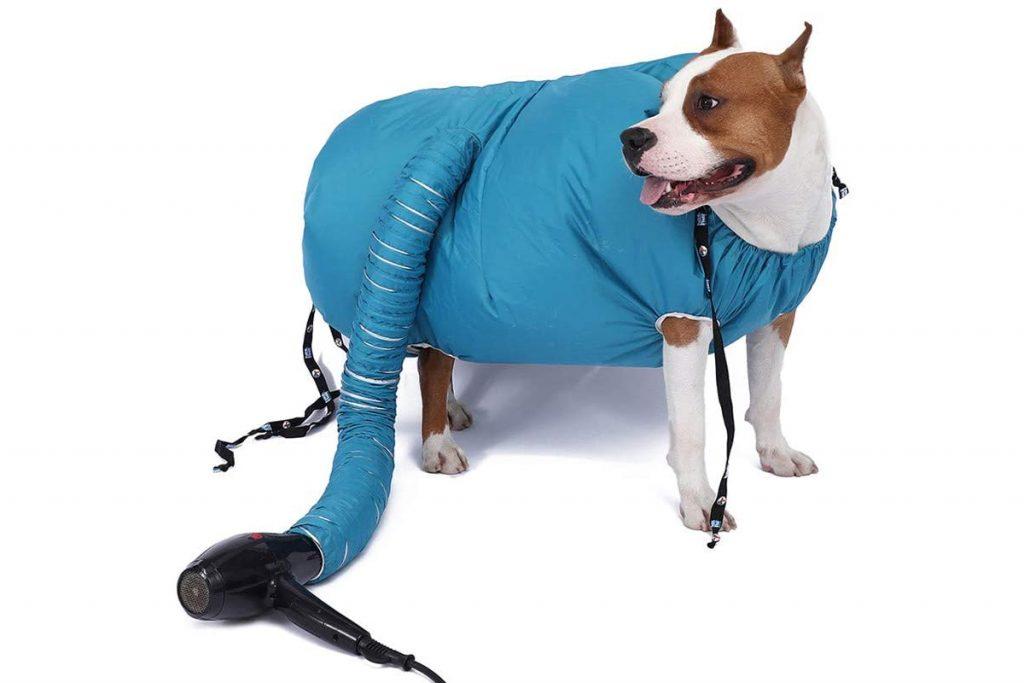 secador-para-cão-cobertor