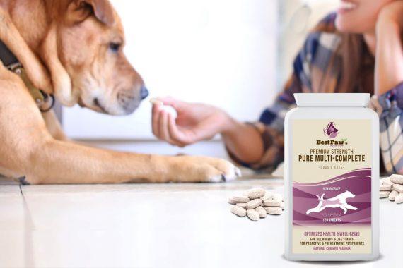 Qué vitaminas son apropiadas para un perro