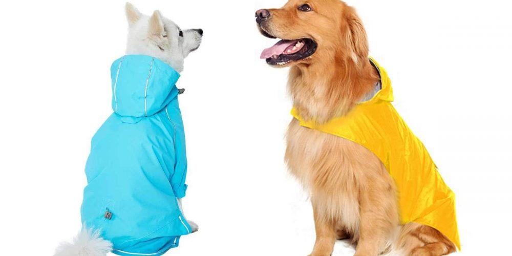 Los mejores chubasqueros para perros