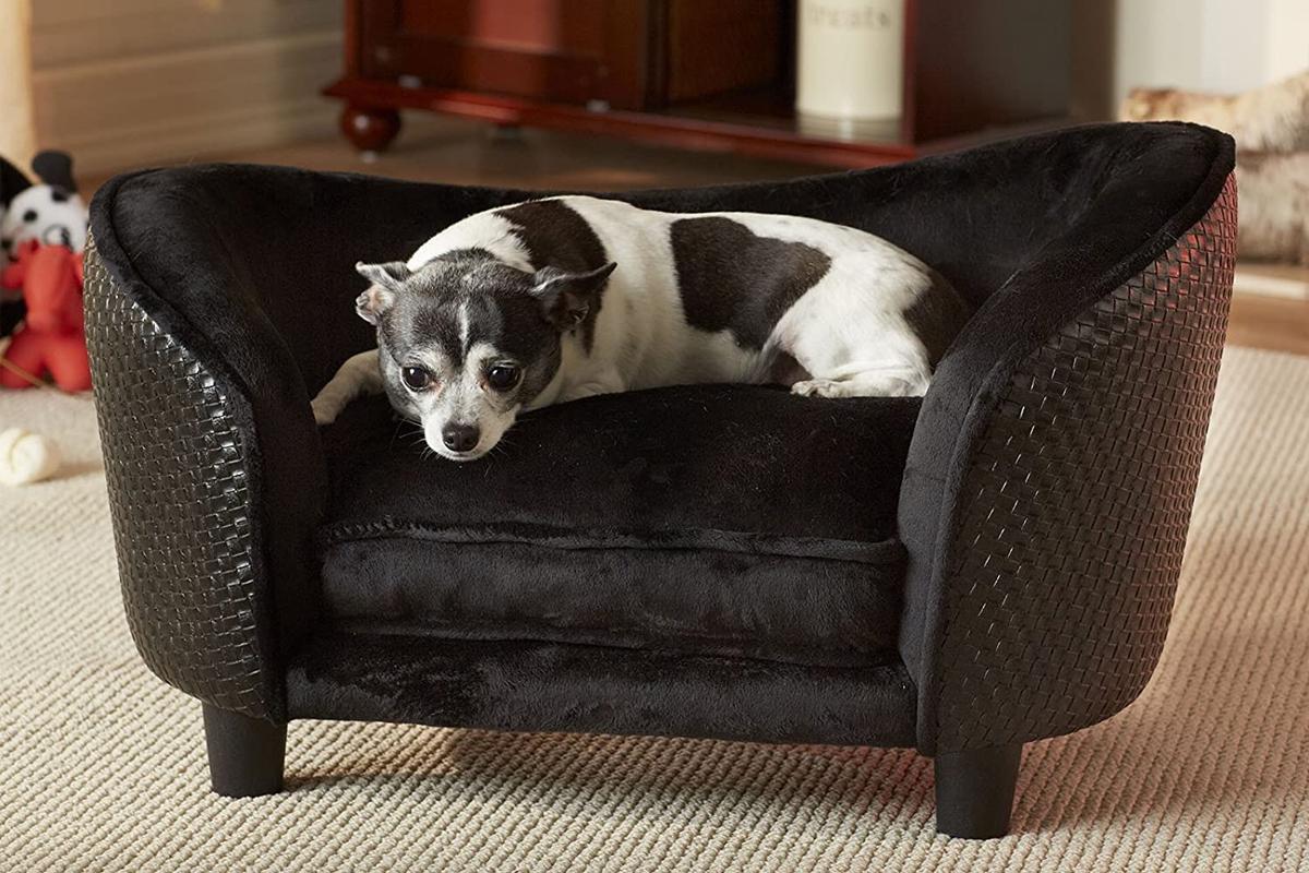 Mejores sofás para perros