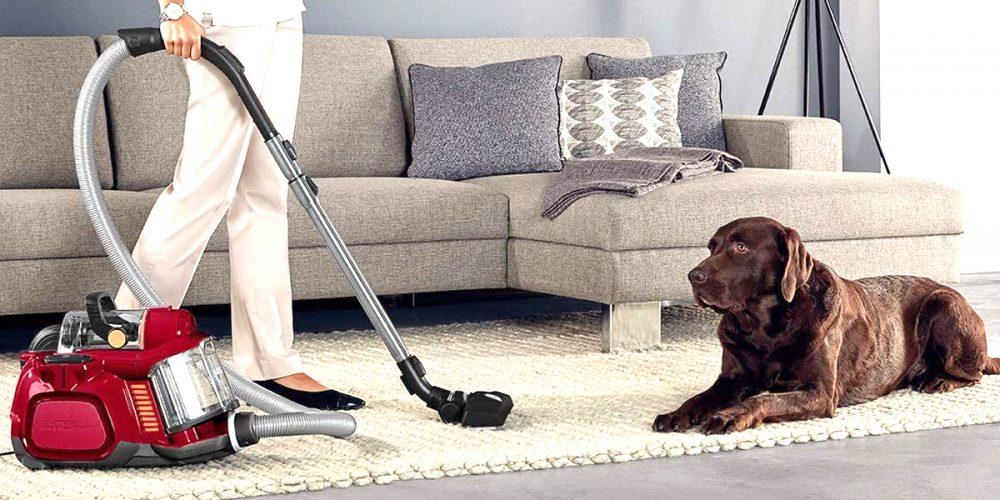 Mejores aspiradoras para el pelo de los perros