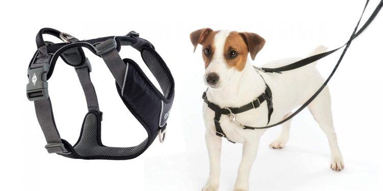 Mejores arneses antitirones para perros