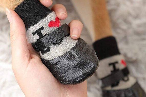 Los mejores calcetines para perros