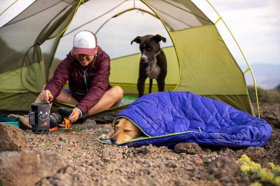 Top 10 mejores sacos de dormir para perros