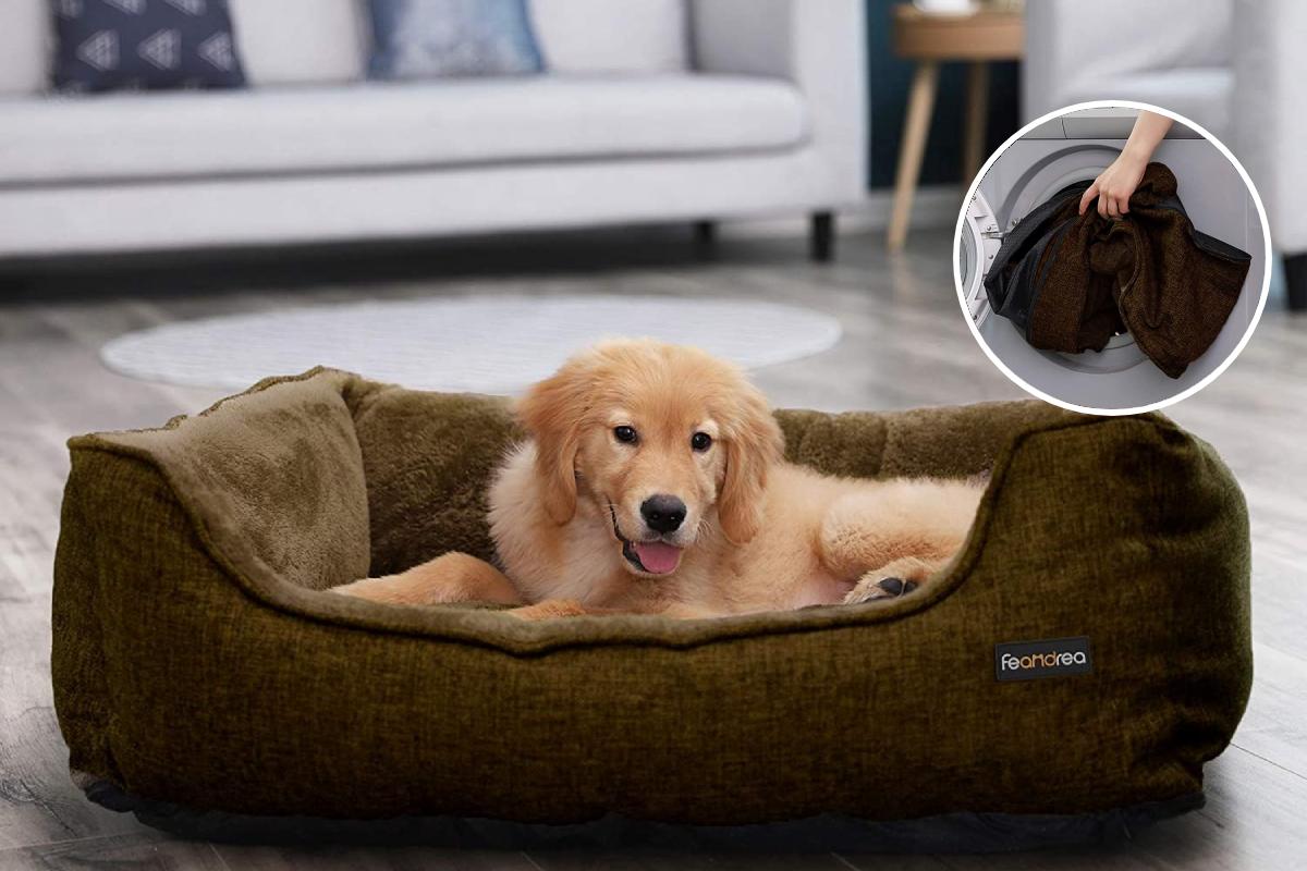Top 10 mejores camas desenfundables para perros