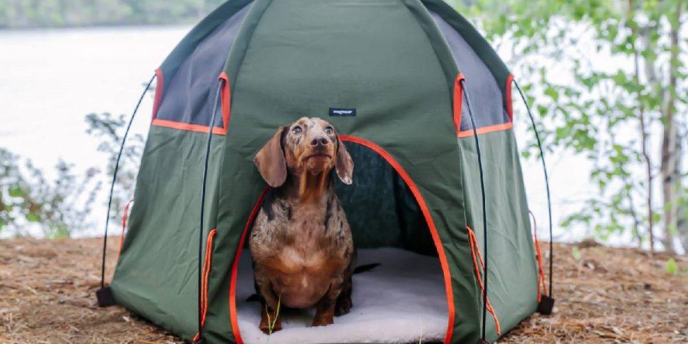 Mejores tiendas de campaña plegables para perros
