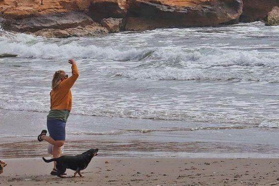 playa para perros de Orihuela
