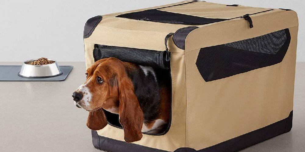 Mejores jaulas plegables de tela para viajar con tu perro