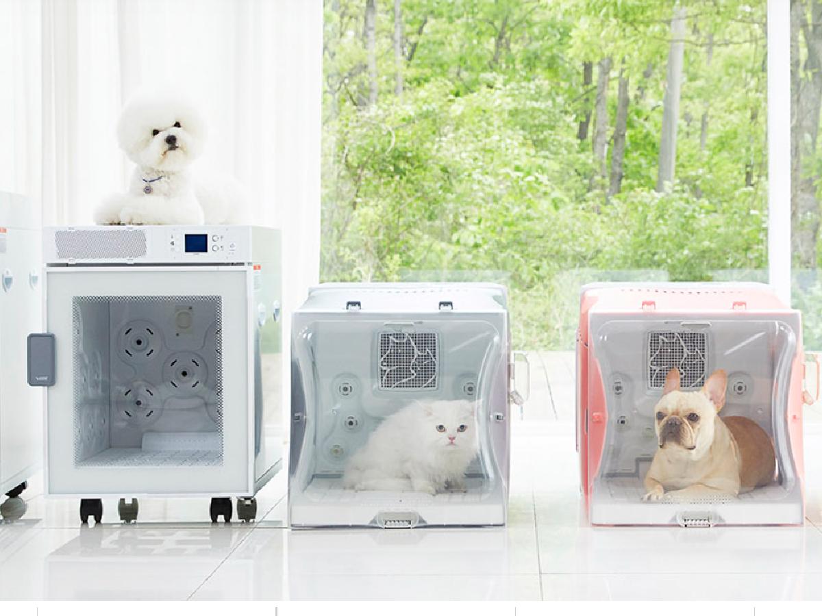 Mejores salas secas para perros