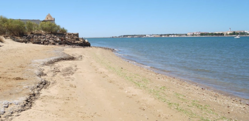 playa para perros en Ayamonte